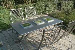 RVS tuinmeubilair: Tuinset Altro
